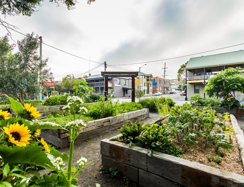 Community Garden Darby Street