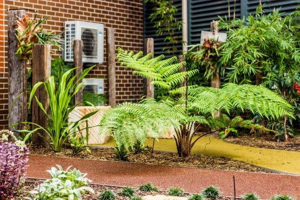 Gallery - MUD Landscape Design, Newcastle